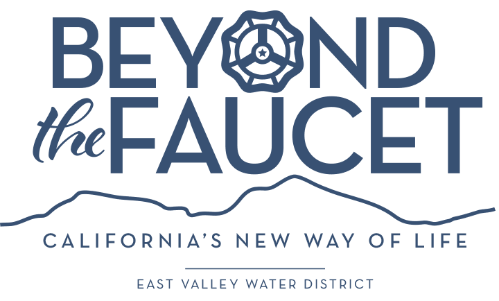 Beyond the Faucet Campaign Logo
